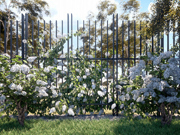 3D model hydrangea garden set