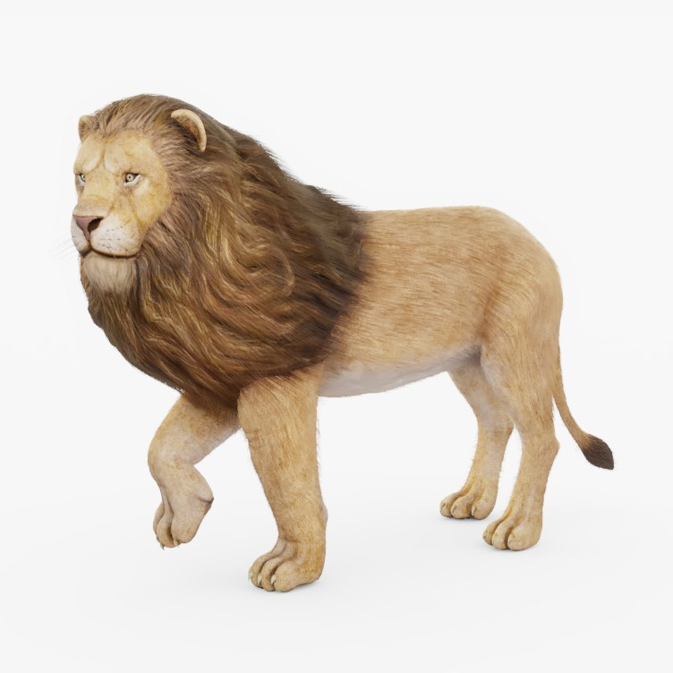 rigged lion 3D model