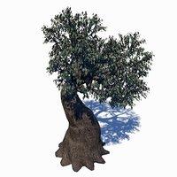 majestic tree model