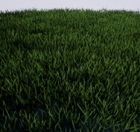 grass ready terrain 3D model