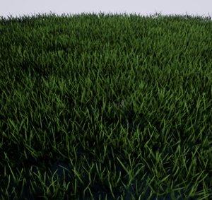 grass ready terrain 3D model
