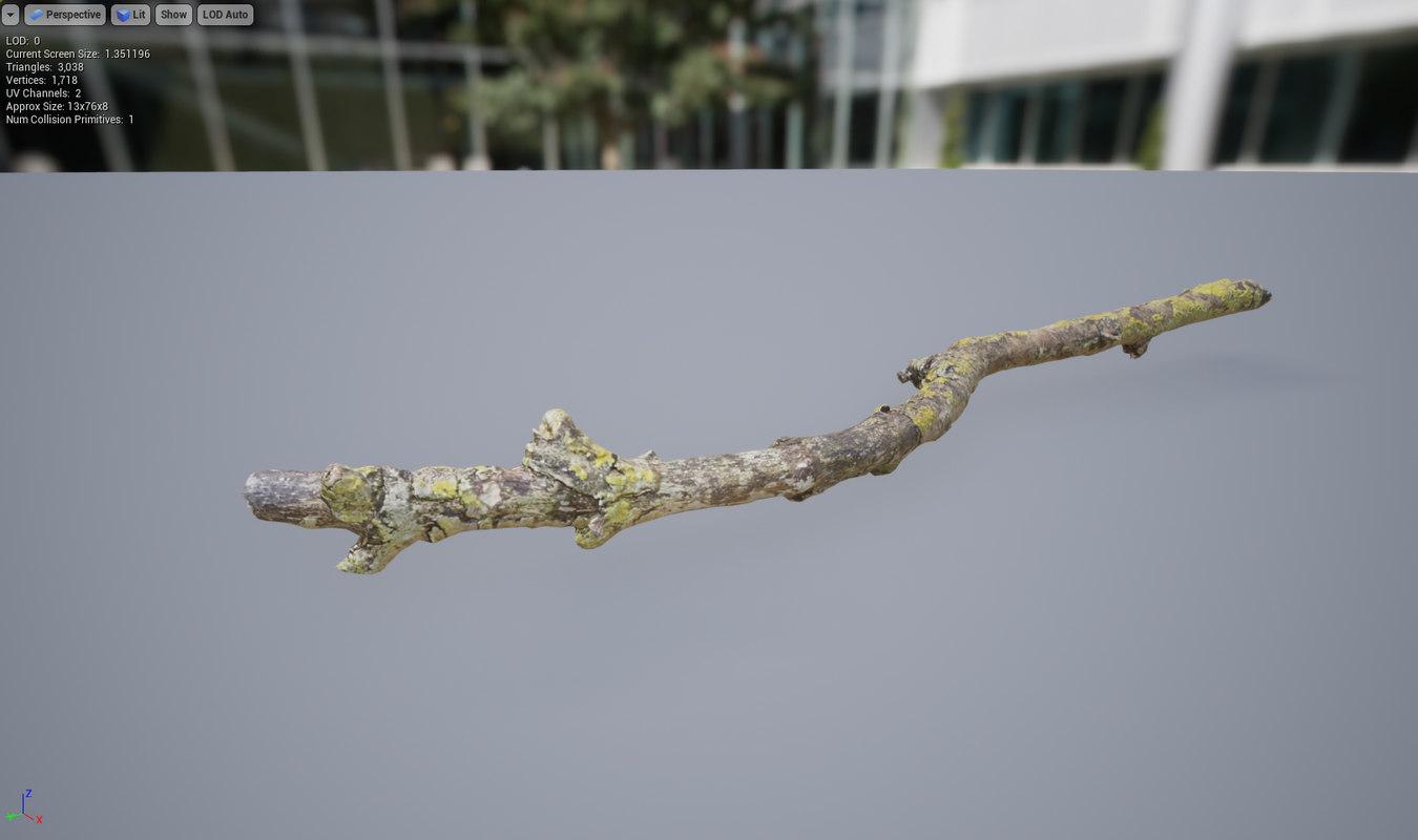 3D branch lichen