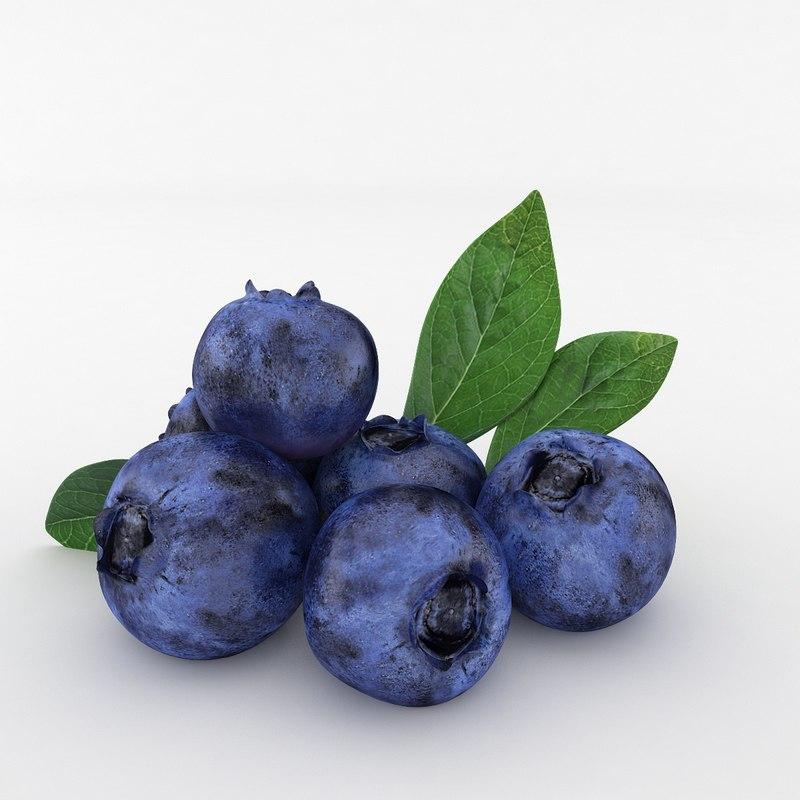 3D blueberry