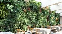 Maxtree vol04-Green wall (GrowFx+Mesh)