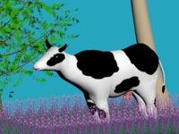cow model