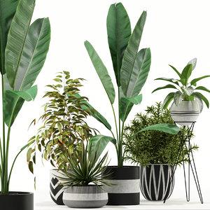 3D plants 114 model