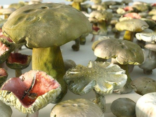 mushroom pack 4 3D model