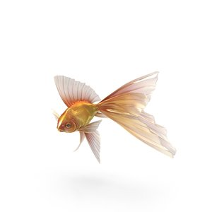 fish gold fantasy model