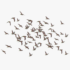 large flock ducks flying 3D model