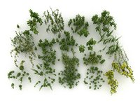 3D model nettle mega pack ecosystems