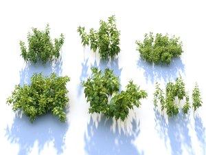 nettle ecosystems pack 6 model