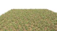 3D grass blades