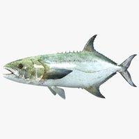leerfish 3D model
