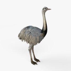 3D model realistic emus