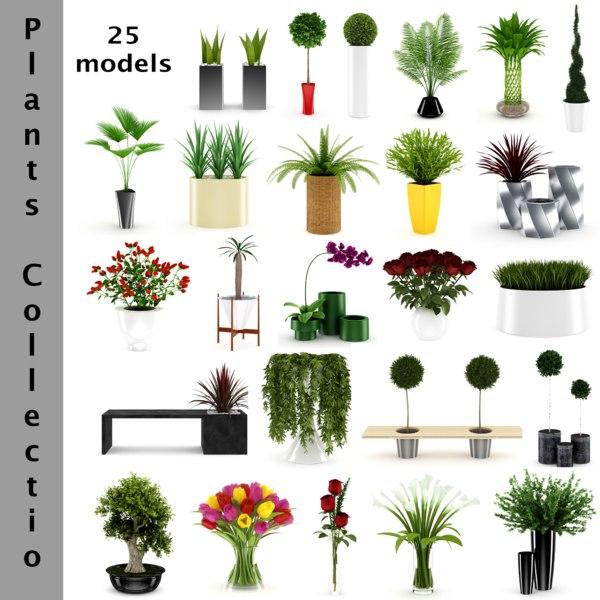 plants flowers 3D