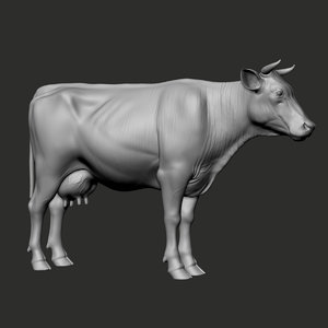 3D cow realistic zbrush animation