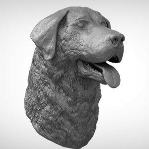 3D labrador ztl zbrush