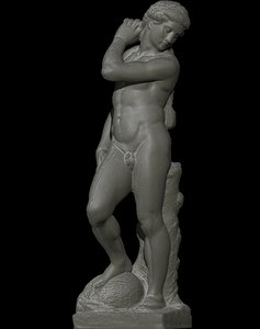 apollo michelangelo model