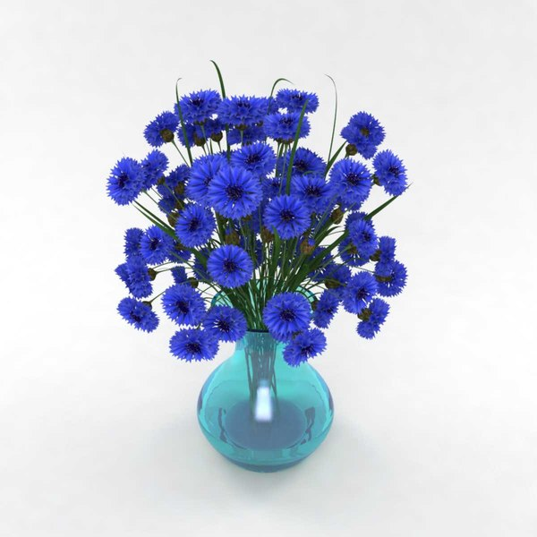 cornflower blue 3D