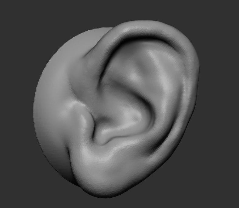 ear ztl zbrush 3D