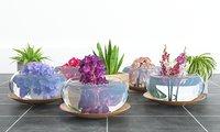 3D glass vases flowers