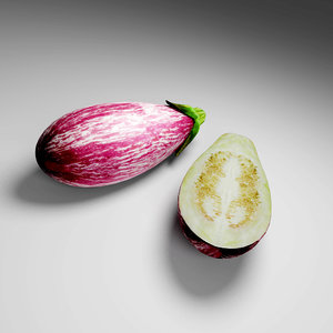 3D model eggplant plant