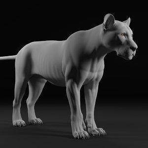 lion realistic zbrush model