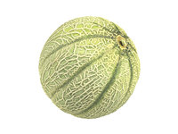 photorealistic scanned charentais melon 3D model