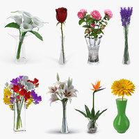 Flowers in Vases 3D Models Collection