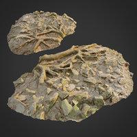 ground stones e 3D