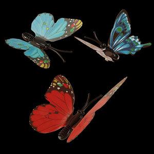 3D magnetic butterflies model