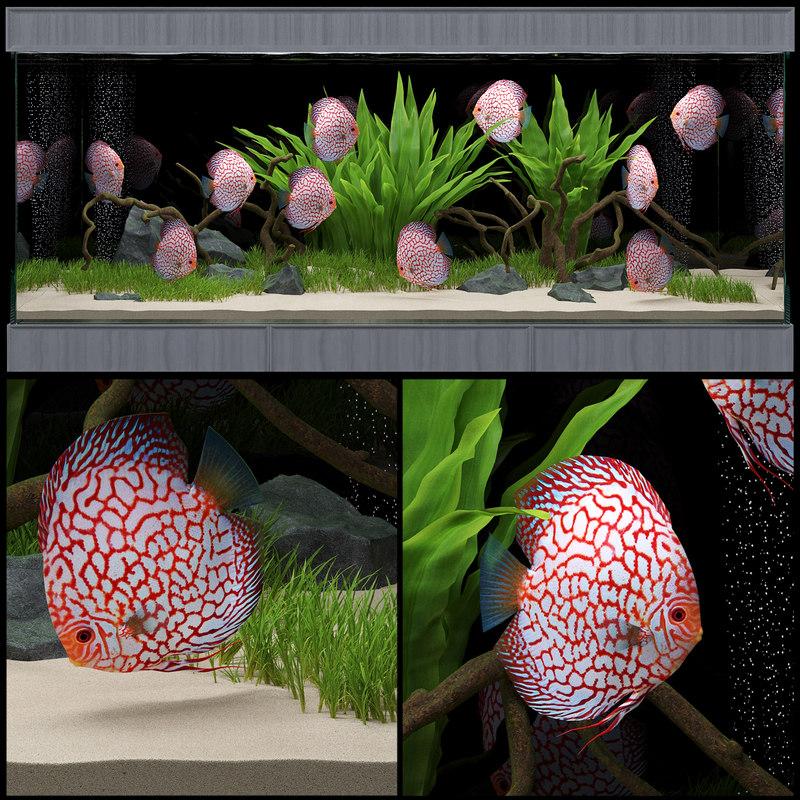 aquarium light 3D model