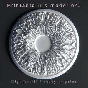 iris printing 3D model