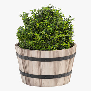 hardwood planter model