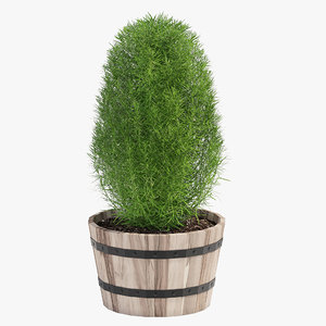 3D hardwood planter