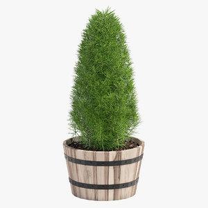 acacia hardwood planter model
