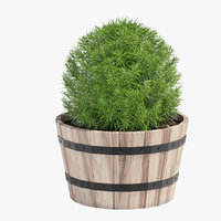 acacia hardwood planter 3D model