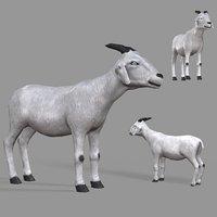 3D pbr goat