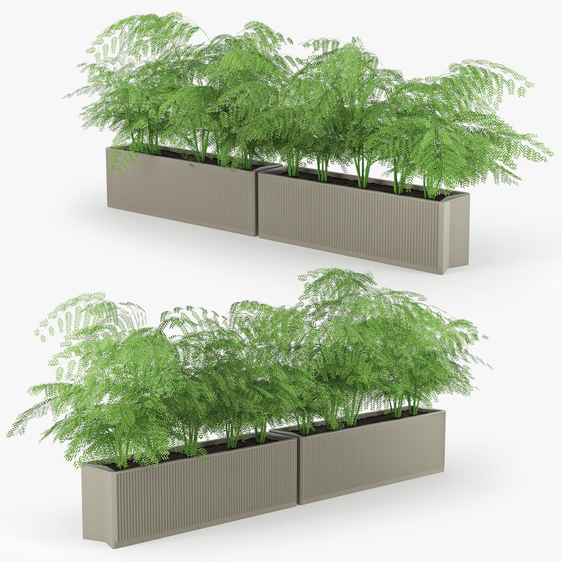 flowerbed model