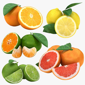 citrus fruit set 2 3D model