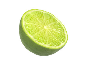 3D photorealistic scanned lime half model