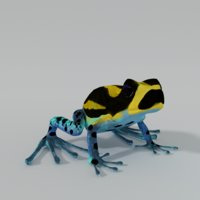 3D amazonian frog