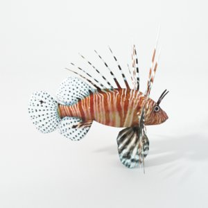 3D fish lion lionfish