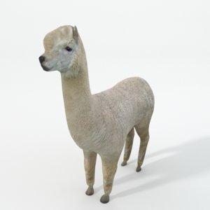 3D llama model