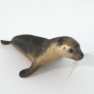 seal model