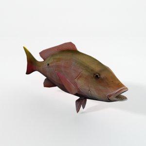 3D snapper fish model