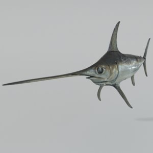 fish swordfish model