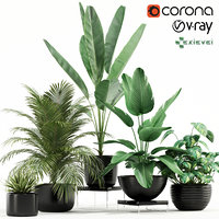 Plants collection 119 GrowFX