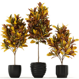 3D model plants 120