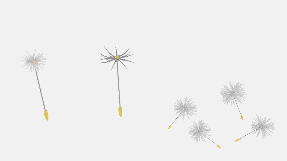 3D dandelion pack
